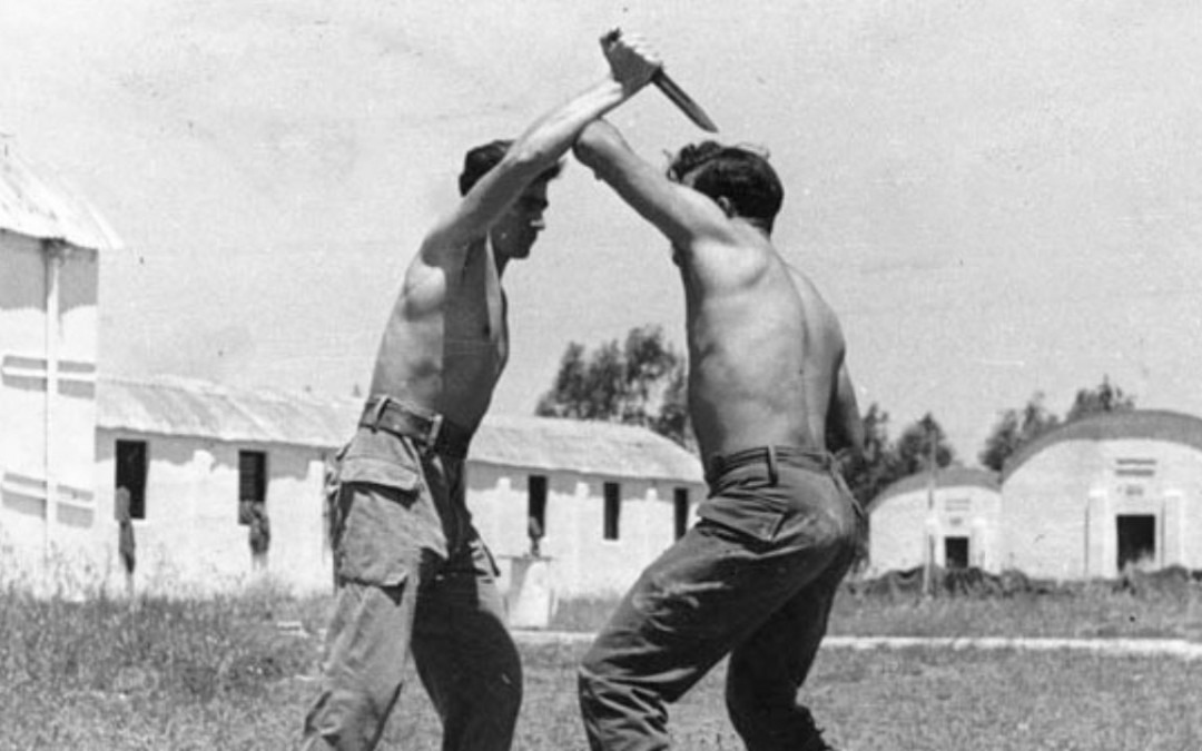 brutal martial arts