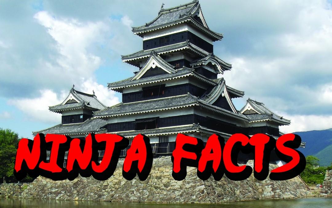 5 Epic Ninja Facts
