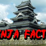 5 Epic Ninja Facts
