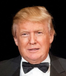 Trump_cropped