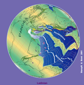 596px-230_Ma_plate_tectonic_reconstruction
