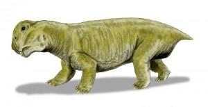 Lystrosaurus_BW