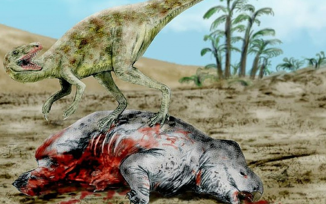 Triassic Animals List 5 Amazing Facts About ...