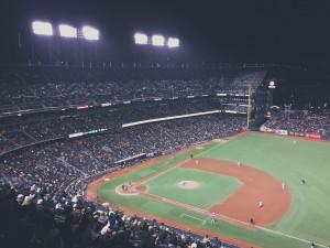 baseball-field-802107_1280 - celebrity stalkers