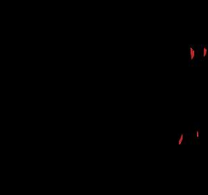 lynx-152071_960_720