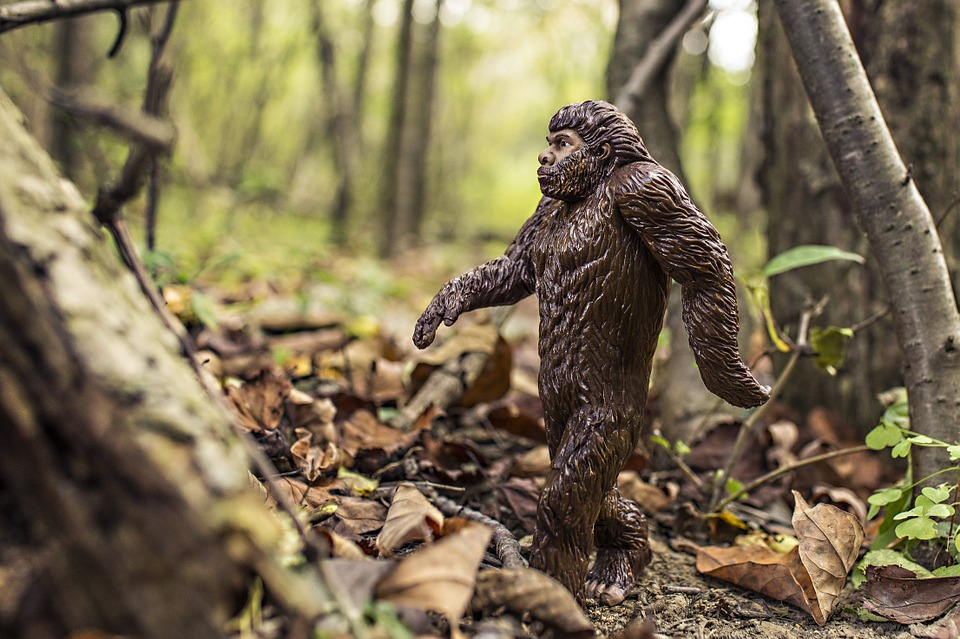 bigfoot0