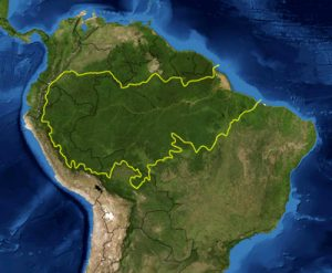 uncontacted tribes Amazon_rainforest