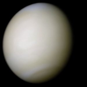 Venus-real_color extraterrestrial life