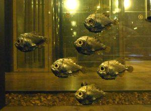 800px-Hache_d'argent strange sea creatures