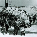 10 Worst Blizzards In History