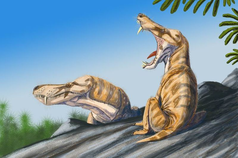 Dinosaur facts-pristeroognathus_db