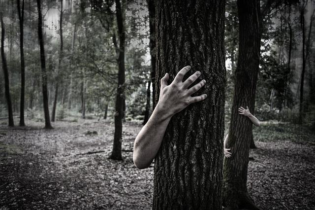 rare mental disorders hands-984032_640