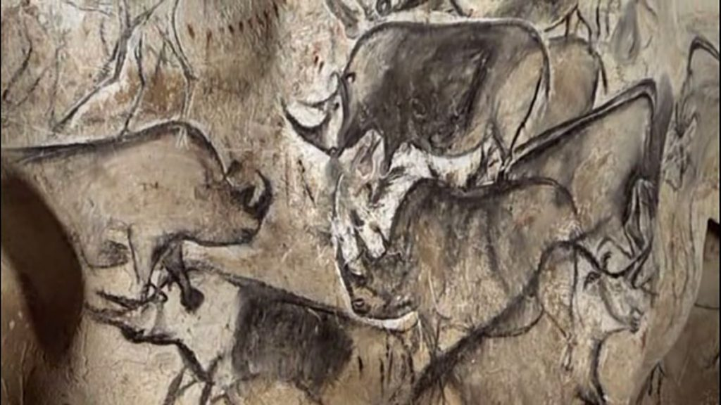 cave paintings Rhinos_Chauvet_Cave