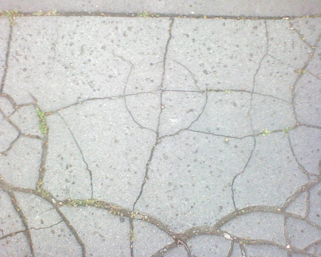 Zodiac_logo_in_fissured_asphalt