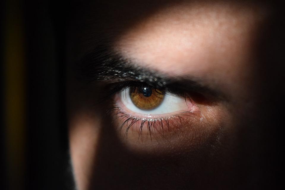 double agents eye-2488227_960_720