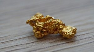 gold nugget Royal Charter