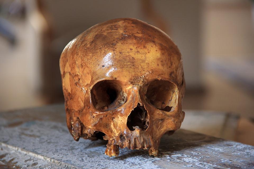 skull-2719233_960_720