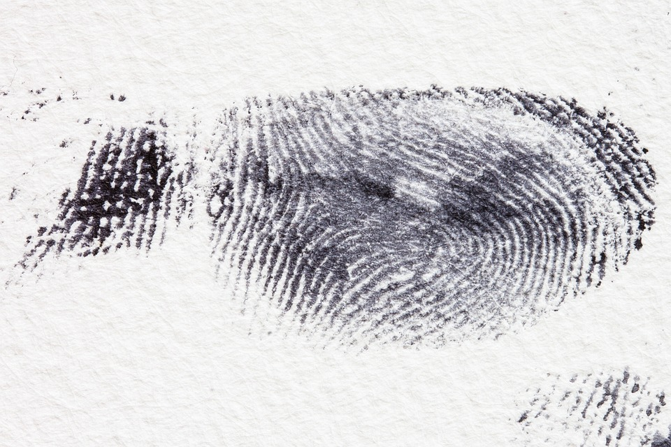 fingerprint-255897_960_720