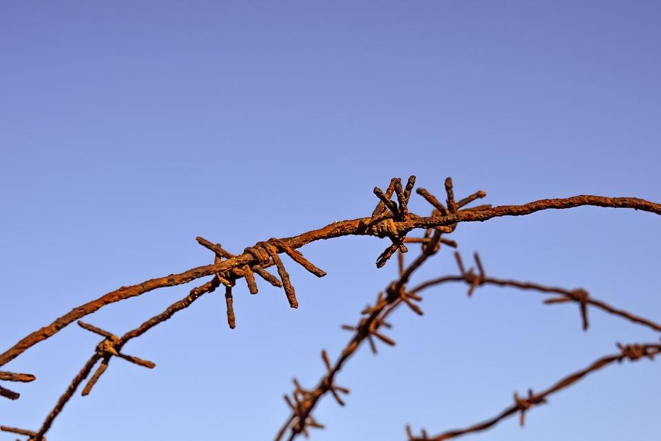 wire-2202773_960_720