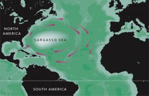 international waters lawless