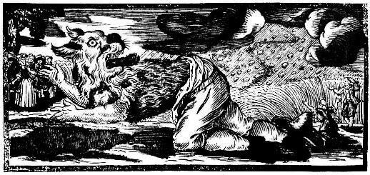 morbach werewolf