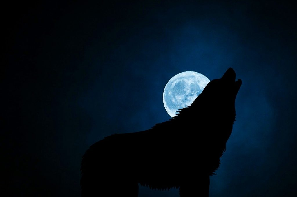 Werewolves from history